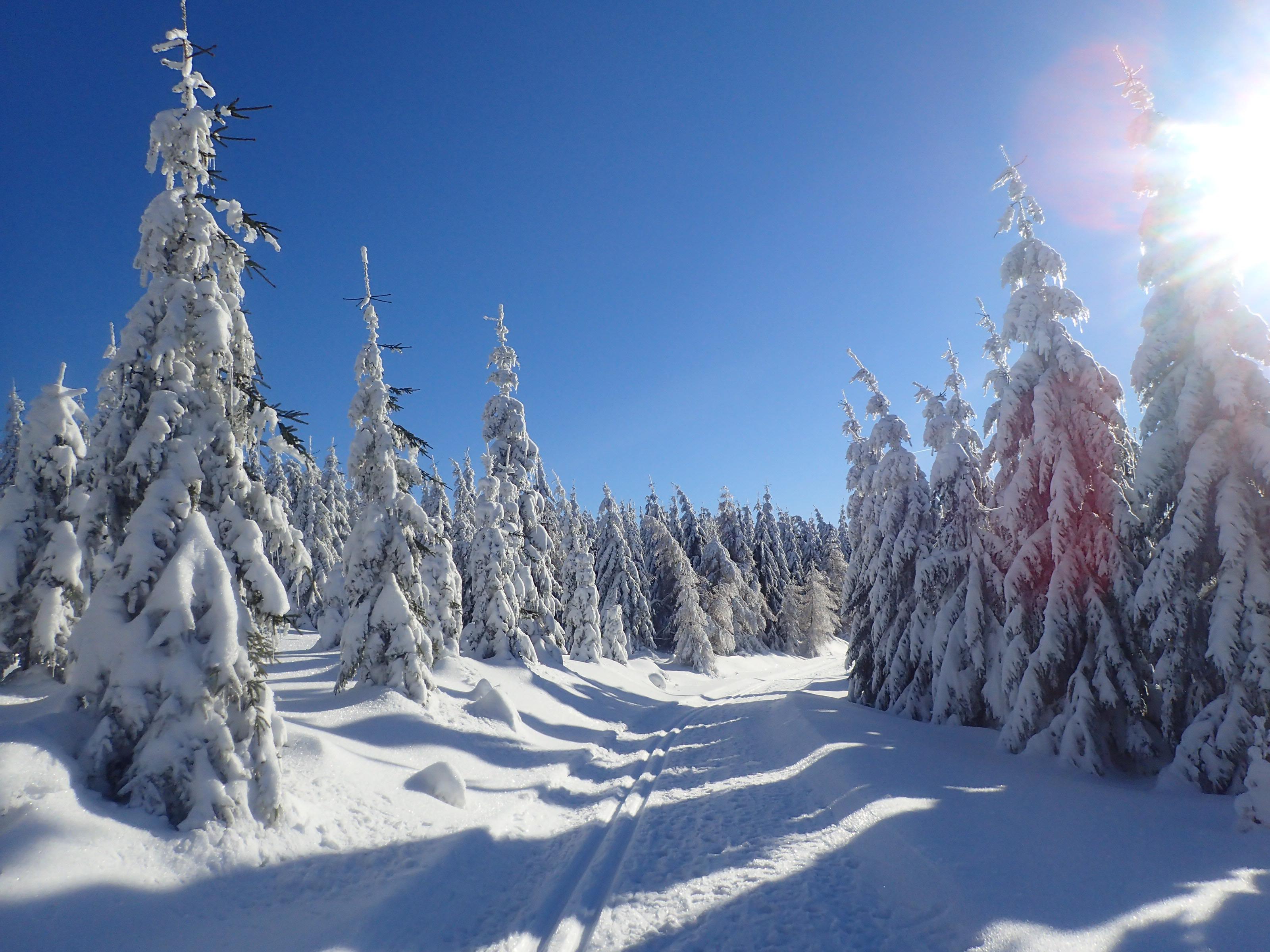 Obóz zimowy !!!